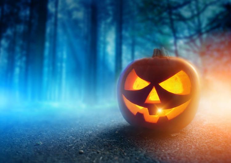 A glowing Jack O Lantern in adark mist Forest on Halloween...