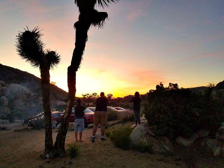 The sun begins to set on Joshua Tree National Park
